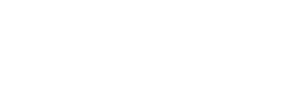 Danche Guitars